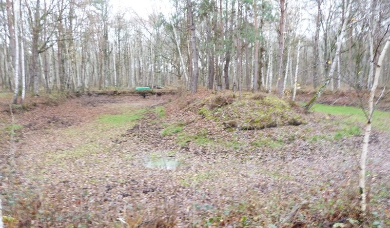 foret a vendre 17 hectares - Propriétés de sologne